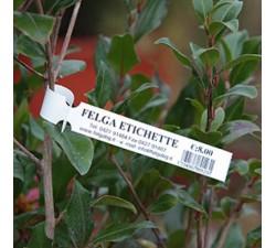 """Бирки """"петелька"""" на растения 15х210мм, материал PET"""